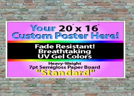 """20"""" x 16"""" Wall Posters"""
